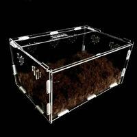 Acrylic-Reptile-Terrarium-Habitat-Ideal-Case-for-Larvae-spiders-ants A9A8 K8J1