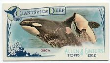 2012 Topps Allen and Ginter Mini Giants of the Deep GD9 Orca Odd 1:5
