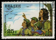 "BELIZE 639 (SG688) - Boy Scouts 75th Anniversary ""Bird Watching"" (pa54968)"