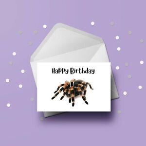 Spider 01 Birthday Card - Free 1st class postage