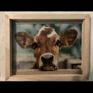 Framed Cow Picture On Canvas/Vinyl Farmhouse Wall Decor 8x10 Rustic Frame Art