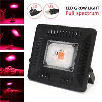 50W COB LED Plante Grow Light Full Spectrum Lampe Croissance Lumière Projecteur