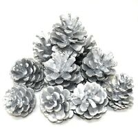1KG OF SILVER PAINTED PINE CONES CHRISTMAS FESTIVE DECORATION - APPRX 50 CONES
