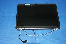 Toshiba Satellite L355D Complete Monitor Top Cover Display Assembly and Screen