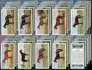 Tobacco Card Set, Ogdens, DERBY ENTRANTS 1928, Horse Racing