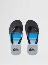 Sandali e scarpe Infradito Quiksilver grigio per il mare da uomo