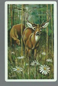 Genuine Swap Vintage Playing Card Animals