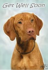 Hungarian Vizsla Get Well Soon Card By Starprint - No 1