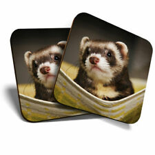 2 x Coasters - Ferret Hammock Pet Rodent Animal Home Gift #16329