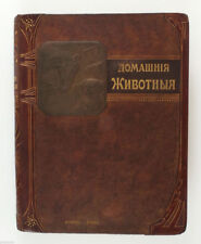 1911 Imperial Russian ДОМАШНИЕ ЖИВОТНЫЕ HOME PETS dogs cats horses Book Album