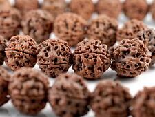 "16-17mm Natural Rudraksha Bodhi Seed Mala Meditation Beads Dark Brown Round 7.5"""