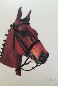 Classic Bay horse greeting card blank inside suitable for any occasion