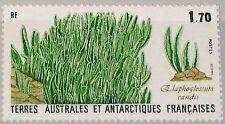 Taaf FSAT 1988 Maury 134 233 133 plantes de l'Antarctique plants flore MNH