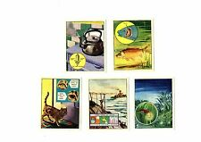 How, What and Why? J. Bibby & Sons LTD (Trex) cards 1 to 5