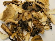 1.5 lbs Dried Mix Wild Mushrooms 100% Natural