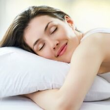 Hotel Collection 100 Cotton Fill Bed Pillows For Sale Ebay