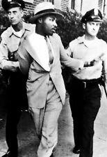 Martin Luther King Jr Poster, Arrested, Peaceful Protest, Civil Rights Leader