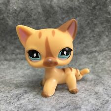 Littlest Pet Shop Animals LPS Toy #886 Brown Short Hair Cat Figure