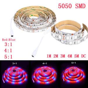 LED Grow Light Strip 12V 5050 300LED Full Spectrum Grow Light Red&Blue 1m 3m 5m