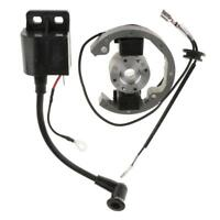 Set Generatore Statore Rotore Bobina Di Accensione Per Moto KTM 50 SX/10