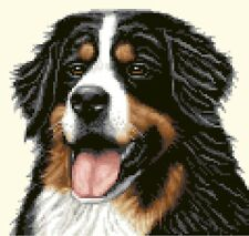 More details for bernese mountain dog - full counted cross stitch kit *jann designs