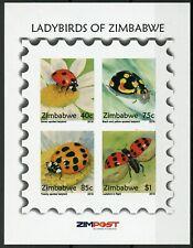 Zimbabwe 2018 MNH Ladybirds Ladybugs 4v IMPF M/S insects Beetles Stamps