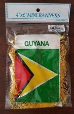 GUYANA Mini Banner Flag Great For Car & Home Window Mirror Hanging 2 Sided