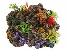 Sucker Mounted Coral Reef Rock with Starfish & Plants Aquarium Ornament