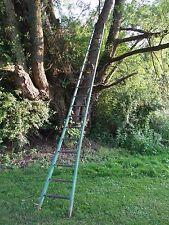 Barn Orchard Tree Arboretum old ladder antique vintage 4.55m