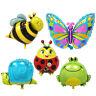 super Süß Insekt Tierchen, Schmettering, Marienkäfer, Schnecke, Biene, Frosch Fo