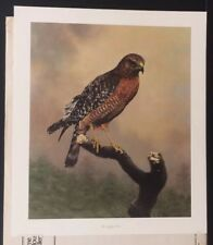 "Charles Frace ""Red-Shouldered Hawk"" Limited Edition Print #808/2000"