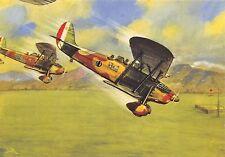 C4910) WW2 ARMA AERONAUTICA, PICCHIATA DI RO 37 SU UN AEROPORTO.