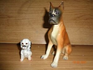 Sitting Boxer Dog Western Germany & spaniel vintage