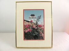 Roman Roses Rome, Italy Ruins Framed & Signed Photographic Print Forum Flowers