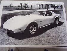 1973  CHEVROLET CORVETTE  12 X 18  LARGE PICTURE  PHOTO