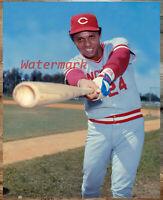 MLB HOFer Tony Perez Cincinnati Reds Color 8 X 10 Photo Picture