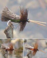 Gilchrist Fliegen. 4 x Trockenfliegen GODDARD CADDIS. Auswahl von Farben & Größe