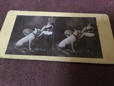 Vintage Stereoscopic Slide - Go Shares