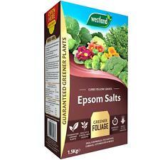 Westland Epsom Salts Plant Fertiliser Feed, Strong Vibrant/Greener Foliage 1.5kg