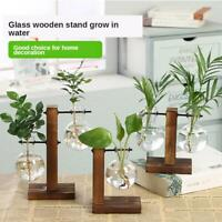 Plant Glass Vase Hydroponic Flower Pot Wooden  Stand Terrarium Display HOT