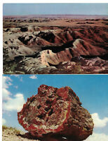 Vintage Giant Arizona Chrome 2 Postcards Painted Desert National Monument RPPC