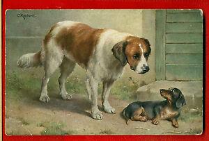 DOG DACHSHUND AND SAINT BERNARD VINTAGE POSTCARD 213