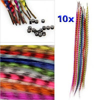 BT Set 10 Colors Grizzly Synthetic Feather Hair Extensions + Beads