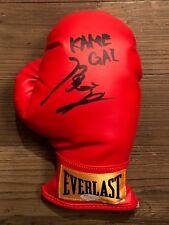 YOSHIHIRO KAMEGAI signed right-handed Everlast boxing glove~proof pic ~ JSA/COA