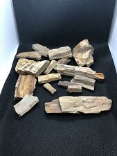 Petrified Wood Natural From Texas Half A Pound.