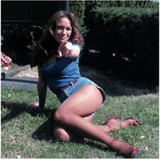 The Dukes of Hazzard Catherine Bach Seated on Grass Pointing 8 x 10 Inch Photo