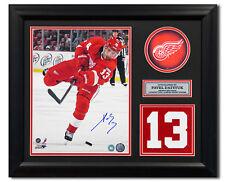 Pavel Datsyuk Detroit Red Wings Signed Franchise Jersey Number 23x19 Frame