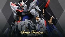 MG Strike Freedom Gundam ZAFT GK Resin Conversion Kits 1:100