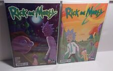 2x copies ADULT SWIM RICK AND MORTY regular and Erica Hayes Variant Cover #2