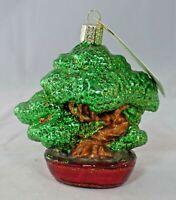 Old World Christmas - Bonsai Tree Christmas Ornament - New